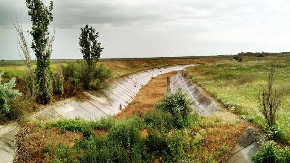 Северо-Крымский канал на территории полуострова к лету 2019 года сильно зарос растительностью и деревьями